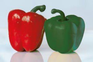 2 Paprika gruen